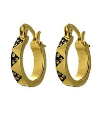 House of Harlow 1960 | Metallic Pave Huggie Earrings | Lyst