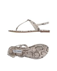 Steve Madden | Natural Thong Sandal | Lyst