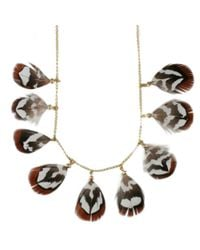 Black.co.uk | Brown Little Birdie Feather Necklace | Lyst