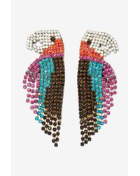 Nasty Gal - Multicolor Melody Ehsani See Me Parrot Earrings - Lyst