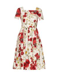 Dolce & Gabbana - Red Poppy-print Cotton Dress - Lyst