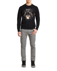 Givenchy - Black Rottweiler Intarsia Knit Sweater for Men - Lyst