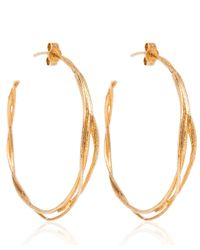 Alex Monroe - Metallic Gold Fine Twist Hoop Earrings - Lyst