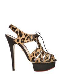 Charlotte Olympia | Multicolor Maxine Leopard-print Calf Hair Sandals | Lyst