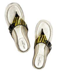 Jimmy Choo - Black Wren Thong Sandals - Lyst