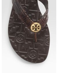 Tory Burch | Brown Thora Snake-printed Leather Flip Flops | Lyst