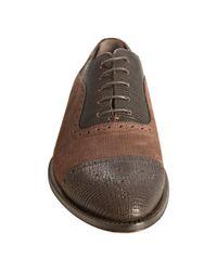 Dolce & Gabbana - Dark Brown Crosshatched Leather Wingtip Oxfords for Men - Lyst