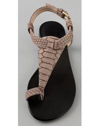 Giuseppe Zanotti - Multicolor Toe Ring Flat Sandals - Lyst