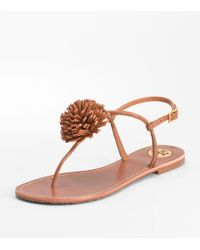 Tory Burch | Brown Cherilyn Pom Pom Sandal | Lyst