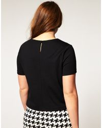 ASOS Collection | Black Asos Curve Exclusive Shell Top in Ponte | Lyst