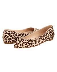 Loeffler Randall - Brown Quinnie Pointed Toe Flat - Lyst
