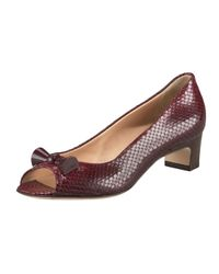 Fendi | Brown Snake-print Kitten-heel Pump | Lyst