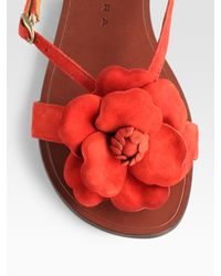 Chie Mihara - Red Wind Flower-embellished Suede Sandals - Lyst