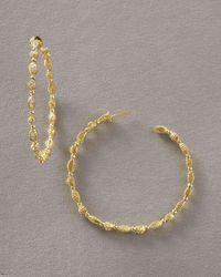 Doris Panos - Metallic Daphne Hoop Earrings - Lyst