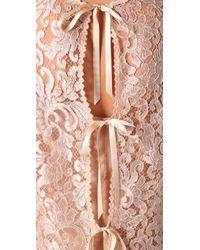 Philosophy di Alberta Ferretti - Pink Lace Crop Top - Lyst