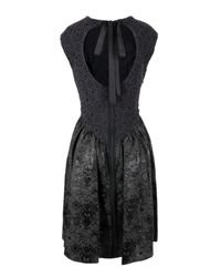 Bolongaro Trevor | Gray Paloma Lace Gull Grey & Black Dress | Lyst