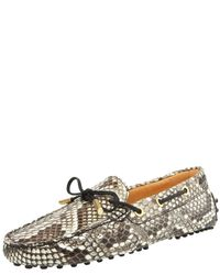 TOMS | Multicolor Python Laced Driver | Lyst