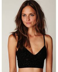 Free People | Black Rose Burnout Velvet Crop Bralette | Lyst