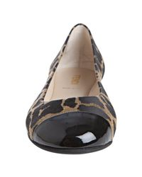 Fendi - Brown and Black Leopard Print Cap Toe Ballet Flats - Lyst