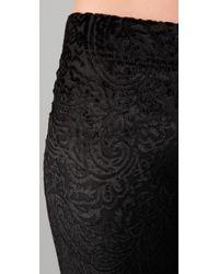 Free People - Black Burnout Velvet Flare Pants - Lyst