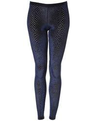 TOPSHOP | Blue Snake Effect Velvet Leggings | Lyst