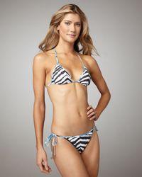 Emilio Pucci | Multicolor Baby Zebra String Bikini | Lyst