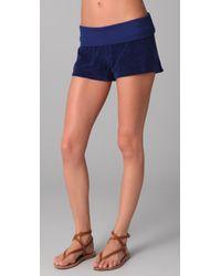 Splendid | Blue Signature Terry Shorts | Lyst