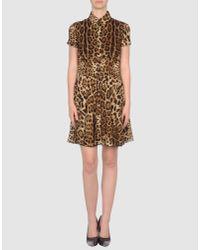 Dolce & Gabbana | Multicolor Knee-length Dress | Lyst
