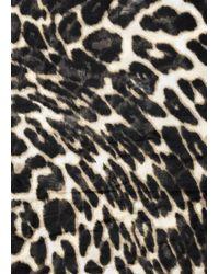Mango - Black Leopard Print Scarf - Lyst