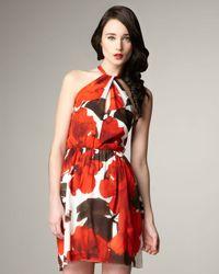 Alice + Olivia | Multicolor Haley Tie Floral Halter Dress | Lyst
