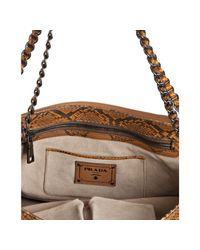 Prada | Brown Brandy Python Pattina Shoulder Bag | Lyst