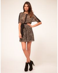 ASOS Collection - Multicolor Asos Dress with Animal Print - Lyst