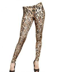 Philipp Plein | Multicolor Leopard Print Viscose Jersey Leggings | Lyst