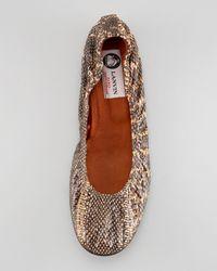 Lanvin - Brown Snakeskin Ballerina Flat - Lyst