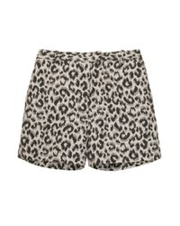 3.1 Phillip Lim   Multicolor Leopard Jaquard Ctn Shorts   Lyst