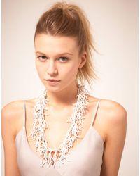 ASOS Collection | Multicolor Asos Seedbead Tassle Long Necklace | Lyst