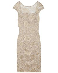 Temperley London | Natural Celestine Lace Cocktail Dress | Lyst
