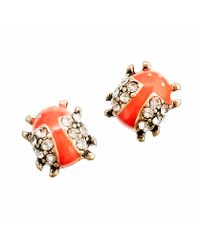 J.Crew | Red Ladybug Earrings | Lyst
