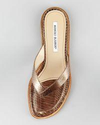 Manolo Blahnik - Metallic Asappla Watersnake Thong Sandal, Bronze - Lyst