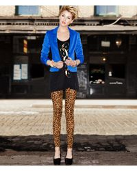 H&M   Animal Leggings   Lyst