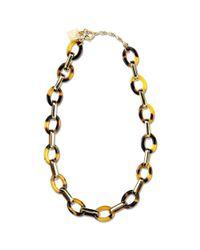 Anne Klein | Metallic Gold Tone Tortoise Link Necklace | Lyst
