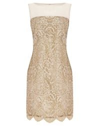 Coast - Metallic Coast Duanna Lace Dress Gold - Lyst