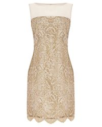 Coast | Metallic Coast Duanna Lace Dress Gold | Lyst
