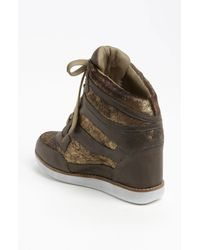 Jeffrey Campbell | Brown Gio Hidden Wedge Sneaker | Lyst