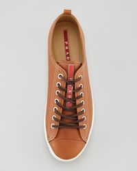 Prada | Captoe Leather Sneaker Brown for Men | Lyst