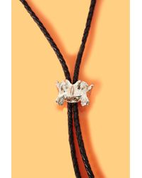 Nasty Gal - Black Fox Bolo Tie - Lyst