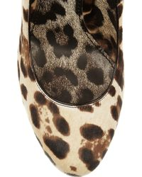 Dolce & Gabbana | Animal Leopardprint Calf Hair Pumps | Lyst