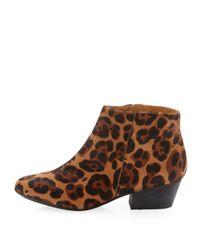 Kelsi Dagger Brooklyn - Multicolor Trulux Calf Hair Ankle Boot - Lyst
