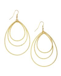 Panacea | Metallic Multi Hoop Teardrop Earrings | Lyst