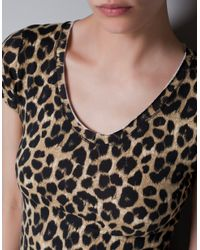 Zara | Brown V-neck T-shirt | Lyst